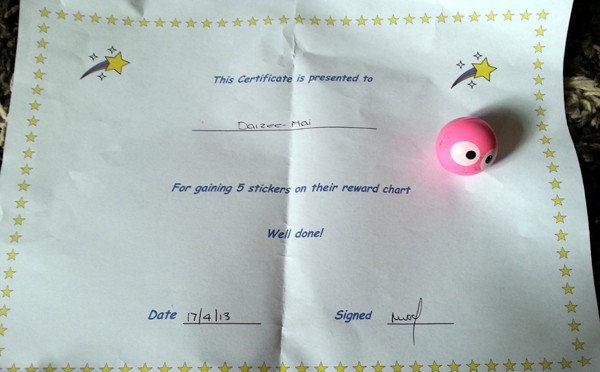My Certificate and Ball