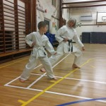 kyler-learns-karate007