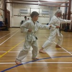 kyler-learns-karate009