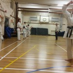 kyler-learns-karate011