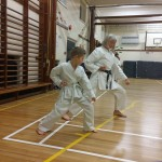 kyler-learns-karate013